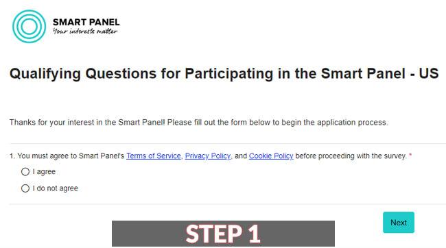 Smart Panel Review Login Guide