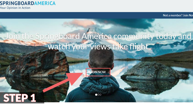 Springboard America Reviews